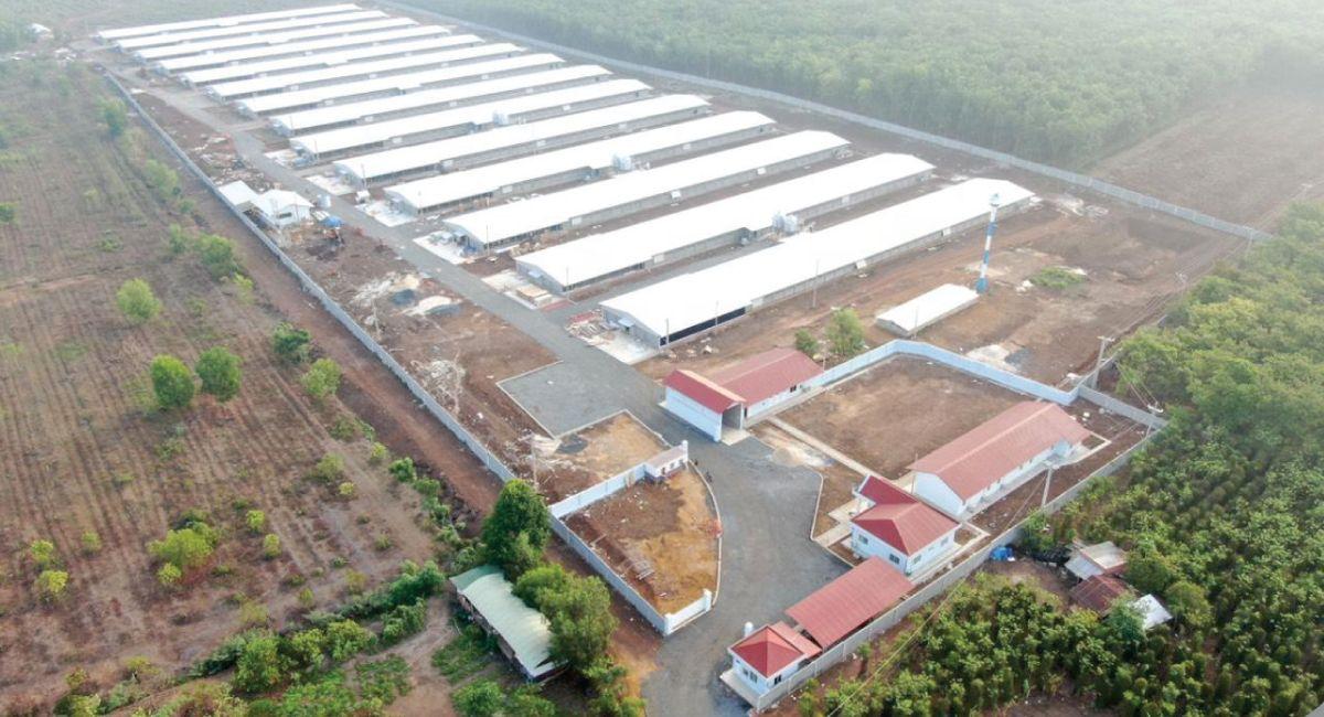 Tôn An Thái - Dự án nổi bật 2020 (3)