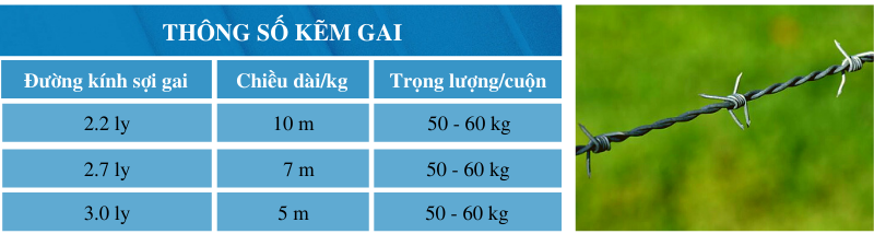thong so kem gai - ton an thai binh phuoc
